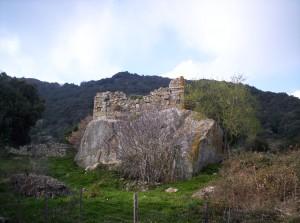 ALTISINA 1