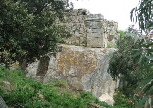 ALTISINA